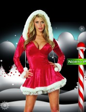 Womens Sexy Santa Costume - Sleigh Belle