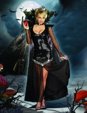 Womens Wicked Witch Outfit - Queen of Mischief