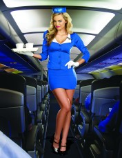 Womens Stewardess Costume - Pilots Own